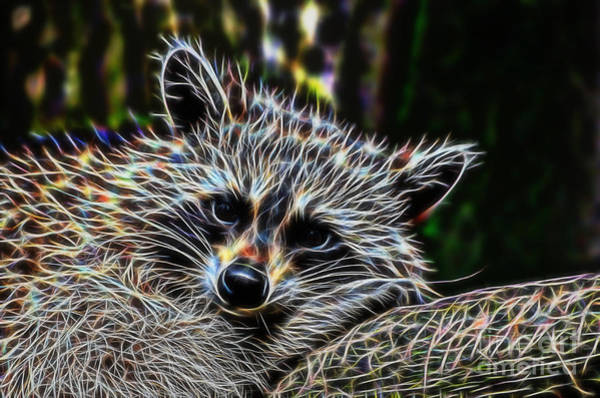 Digital Art - Racoon Fractal by Tracey Everington