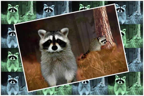 Digital Art - Racoons - Painted by Ericamaxine Price