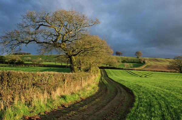 Photograph - Raddon Top In Mid Devon by Pete Hemington