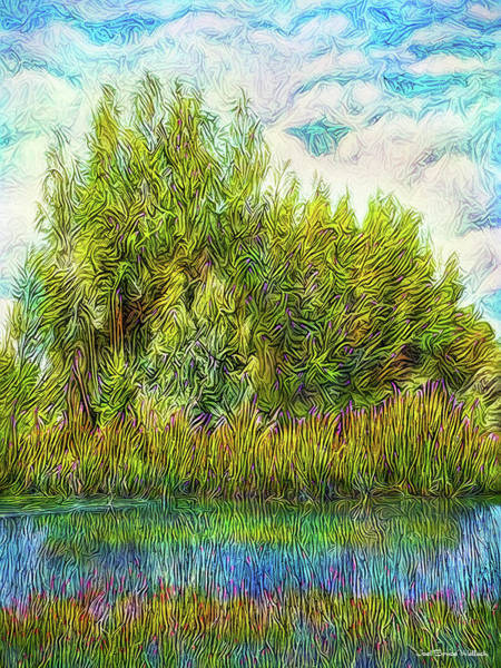 Digital Art - Radiant Lake Sunset by Joel Bruce Wallach