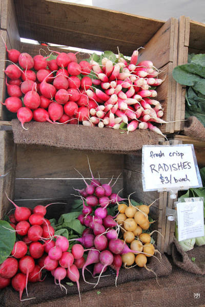 Photograph - Radishes by John Meader