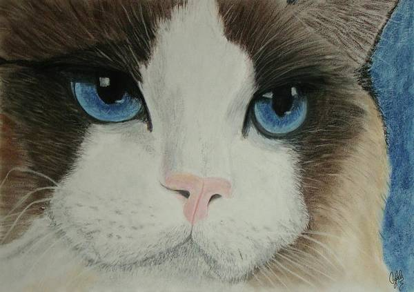 Comission Painting - Blue Eyes by Cybele Chaves