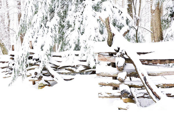 Boundary County Photograph - Rail Fence In Snow by Thomas R Fletcher
