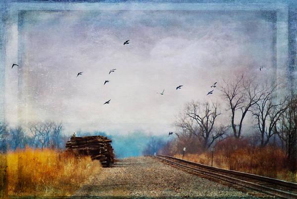 Photograph - Railroad Birds by Anna Louise