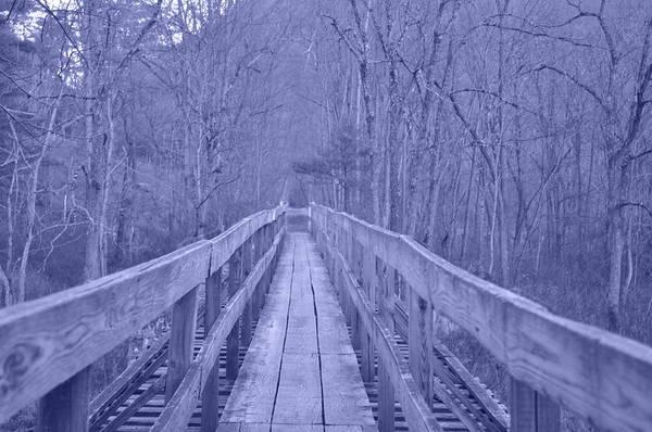 Photograph - Railroad Bridge by Trish Tritz