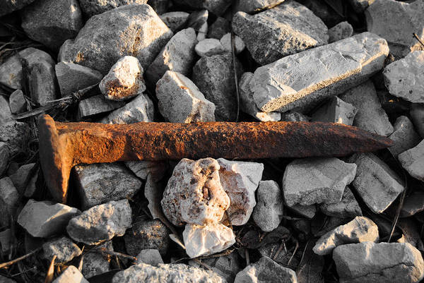 Photograph - Railroad Spike by Nathan Little