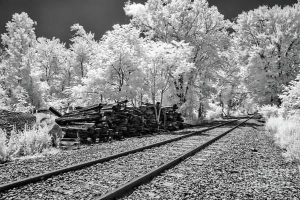 Photograph - Railroad Tracks Bw by Anthony Sacco