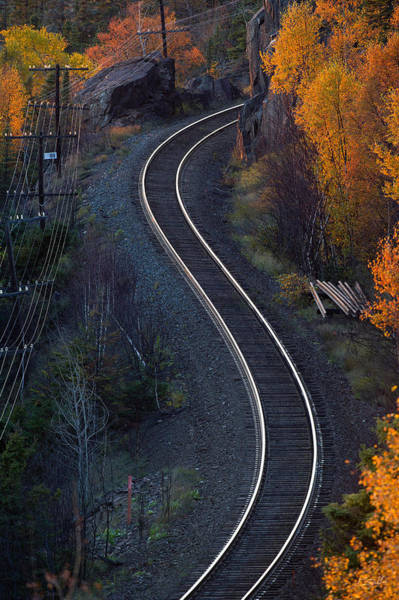 Photograph - Rails by Doug Gibbons