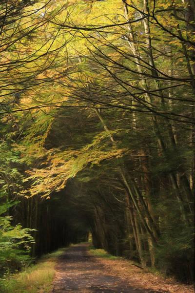 Stoney Photograph - Rails To Trails by Lori Deiter