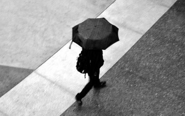 Walking In The Rain Wall Art - Photograph - Running In The Rain by David Lee Thompson