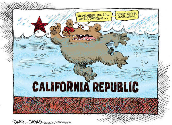 Drawing - Rain And Drought In California by Daryl Cagle