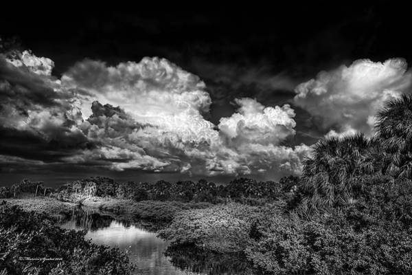 Marshland Photograph - Rain And Lighting by Marvin Spates