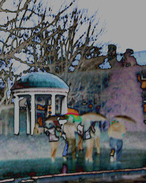 Wall Art - Photograph - Rain At The Well by David A Brown