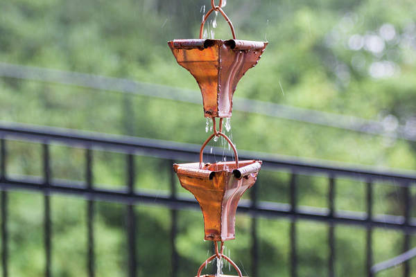 Photograph - Rain Chains by D K Wall
