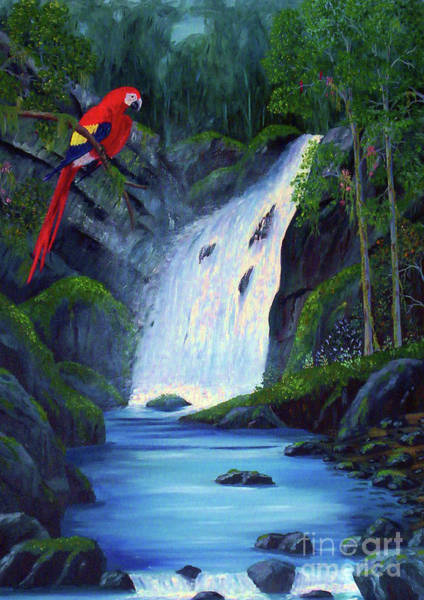 Painting - Rain Forest Macaws by Stanton Allaben