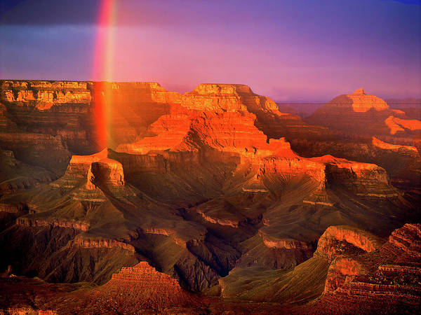 Rainbow At The Grand Canyon Art Print