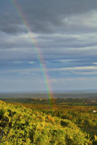 Photograph - Rainbow Bright by Sharon Popek