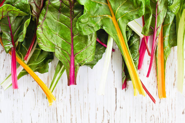 Wall Art - Photograph - Rainbow Chard by Tom Gowanlock