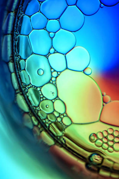 Colored Bubbles Photograph - Rainbow Connection  by Maggie Terlecki