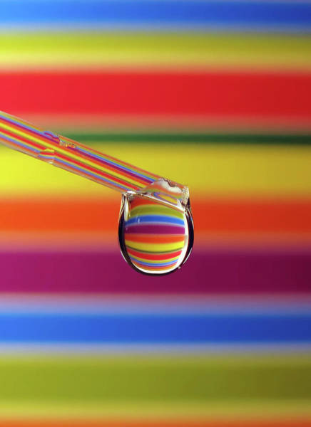 Dripping Water Photograph - Rainbow Drop by Vesna Viden