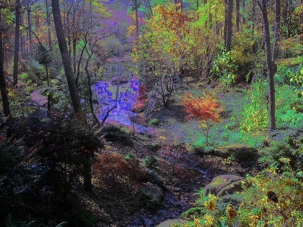 Photograph - Rainbow Fairies Sweep Across The Landscape by Anne Cameron Cutri