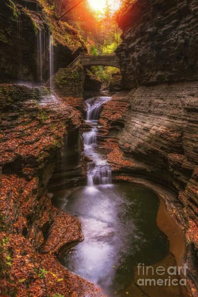 Wall Art - Photograph - Rainbow Falls by Michael Ver Sprill