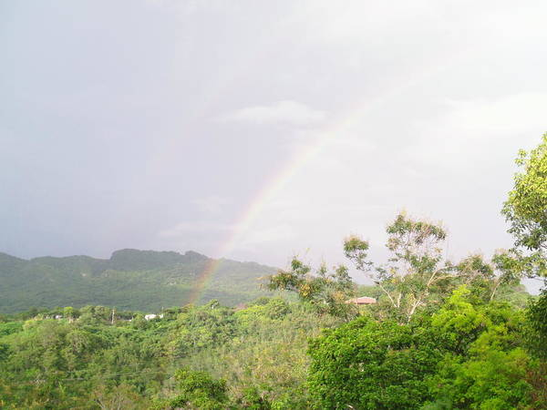 Photograph - Rainbow In Villalba, Puerto Rico by Walter Rivera Santos