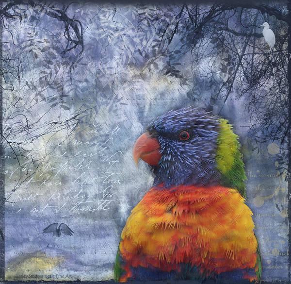 Rainbow Lorikeet And Egrets Art Print