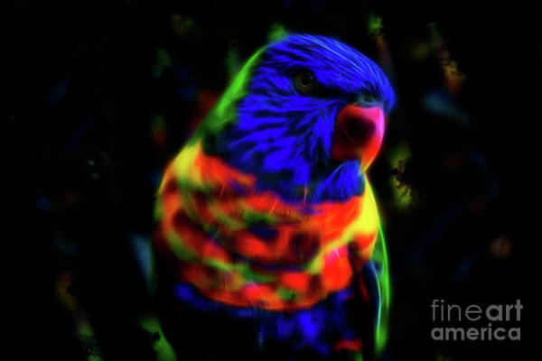 Digital Art - Rainbow Lorikeet - Fractal by Tracey Everington