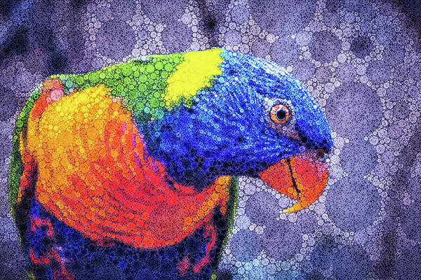 Woodland Animals Mixed Media - Rainbow Lorikeet by Susan Maxwell Schmidt