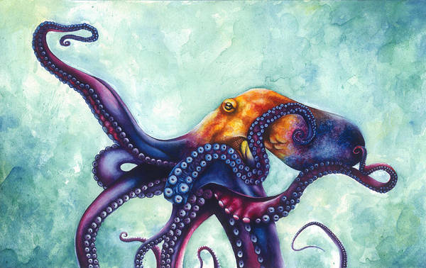 Sealife Painting - Rainbow Octopus by Ashley Brown