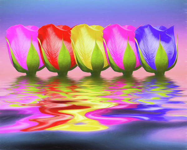 Pink Rose Photograph - Rainbow Of Roses II by Tom Mc Nemar