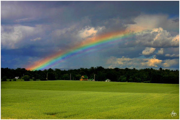 Photograph - Rainbow Over A Hayfield by Wayne King