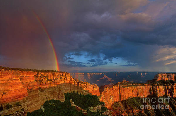 Photograph - Rainbow Over Cape Royal North Rim Grand Canyon National Park by Dave Welling