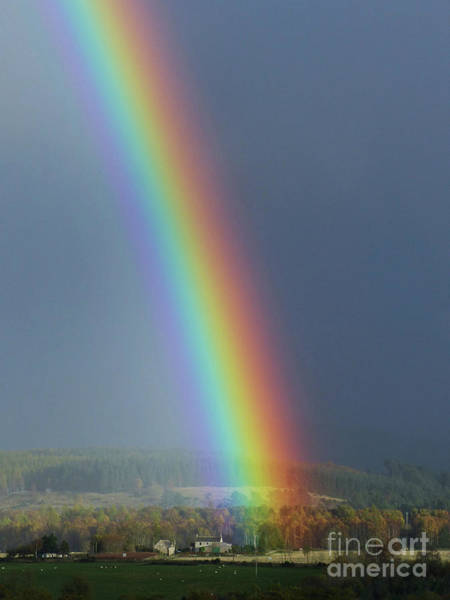 Photograph - Brilliant Rainbow by Phil Banks