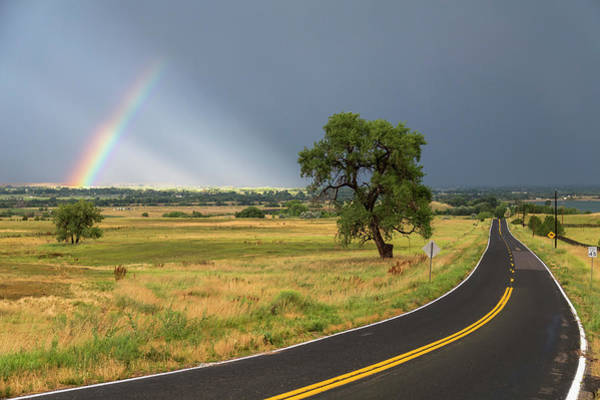 Photograph - Rainbow Road by James BO Insogna