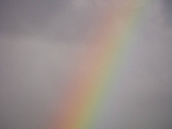 Photograph - Rainbow by Robin Zygelman