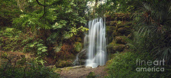 Photograph - Rainbow Springs Fall by Tim Wemple