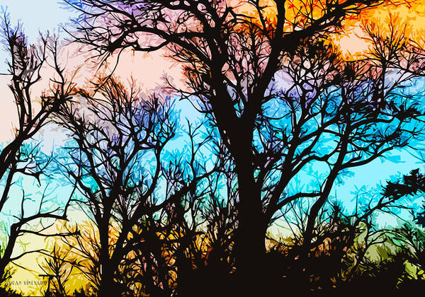 Photograph - Rainbow Sunset by Susan Vineyard