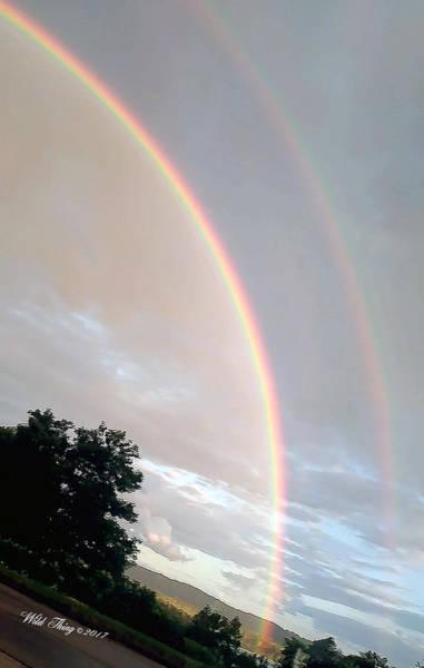 Photograph - Rainbow Tilt by Wild Thing