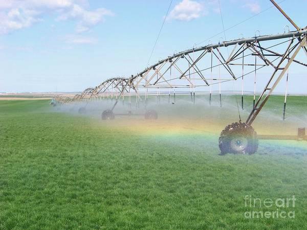 Rainbow Under The Pivot Art Print