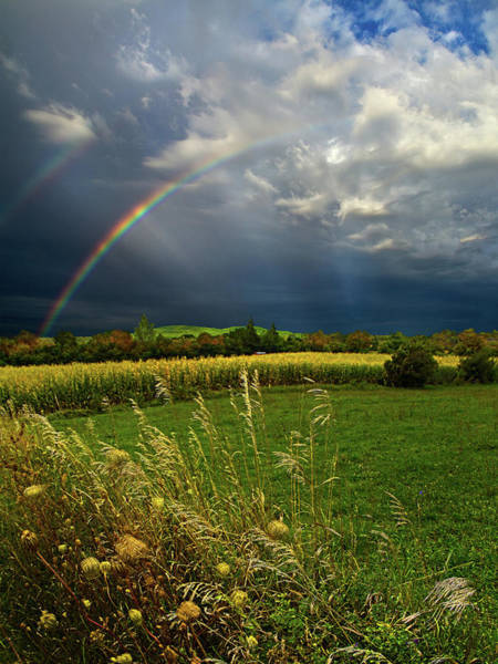 Natur Wall Art - Photograph - Rainbows by Phil Koch