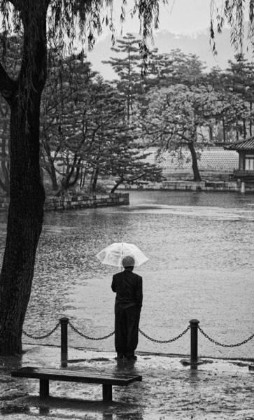 Photograph - Raindrops Keep Falling by Cameron Wood