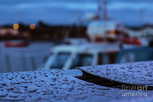Photograph - Raindrops On Metal Bench 4 by Marc Daly