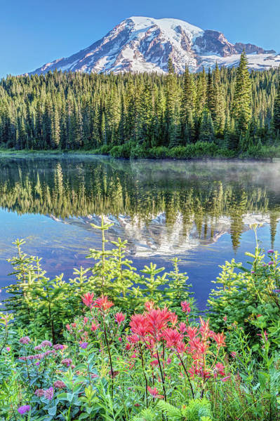 Photograph - Rainier Wildflowers At Reflection Lake by Pierre Leclerc Photography