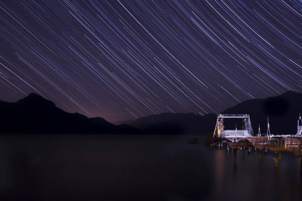 Photograph - Raining Stars by Windy Corduroy