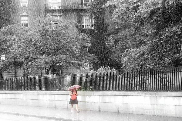 Walking In The Rain Wall Art - Photograph - Rainy Day by Julie Lueders