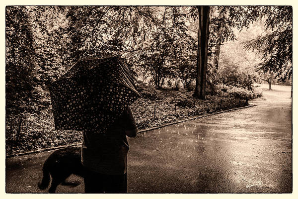Wall Art - Photograph - Rainy Day - Woman And Dog by Madeline Ellis