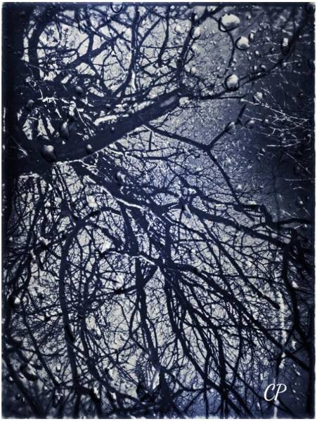 Photograph - Rainy Days by Christine Paris