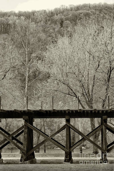 Photograph - Raised Rails Black And White by Karen Adams
